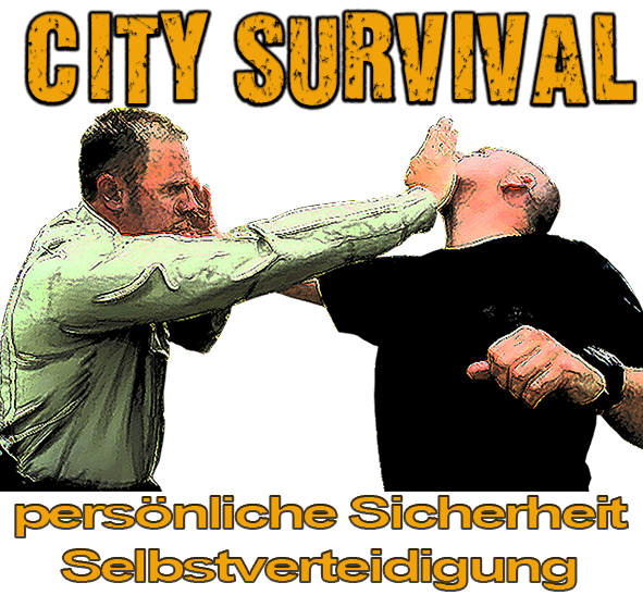 city survival
